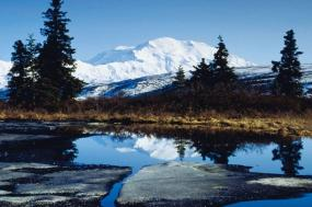 Jewels of Alaska and Cruise Inside Stateroom (Summer 2019) tour