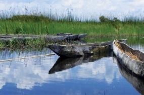 Okavango & Beyond tour