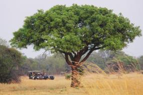 Ultimate Africa: Botswana, Zambia & Zimbabwe Safari tour