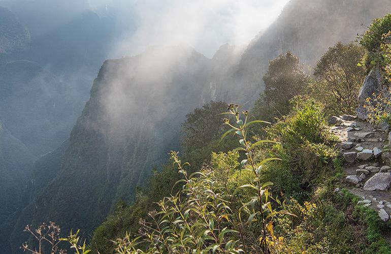 Inca Trail & Amazon tour