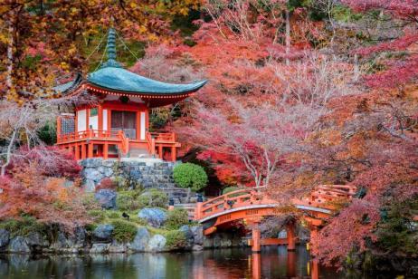 Ancient & Modern Japan tour
