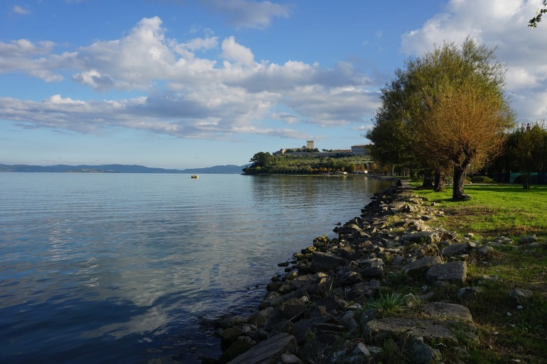 Trees near the Lake-Trasimeno-Italy-1776024-p
