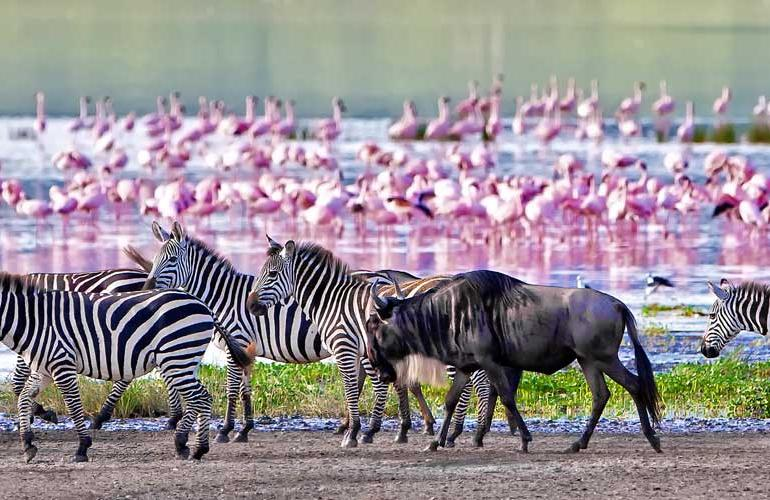 Safari to Kilimanjaro - Machame Route tour