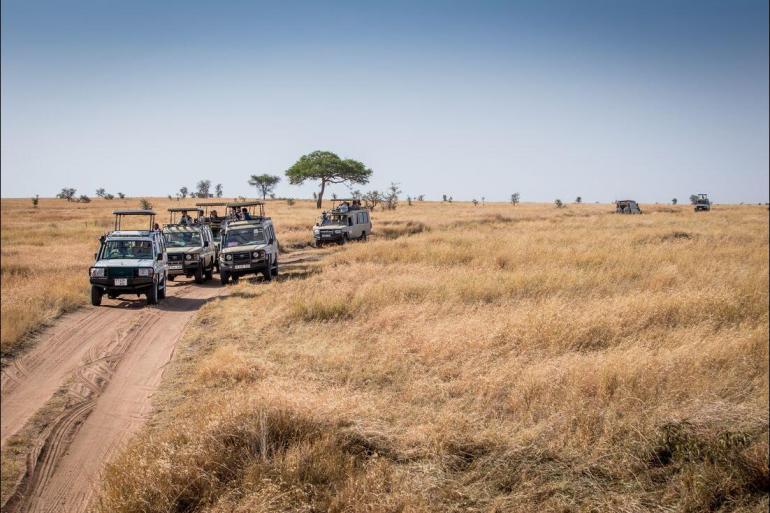 Arusha Nairobi Safari to Kilimanjaro - Machame Route Trip