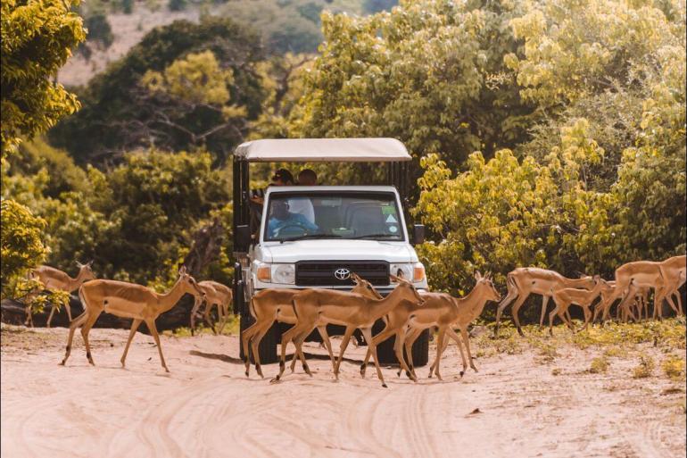 Chobe National Park Hwange National Park Explore Southern Africa Trip