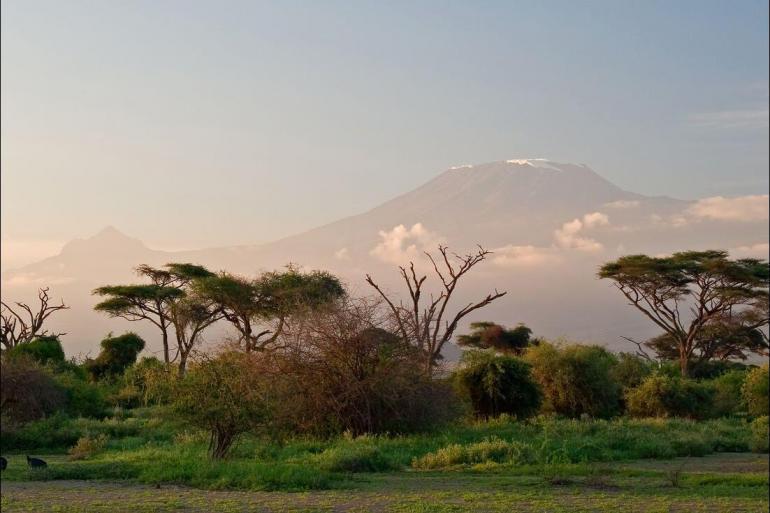 National Parks Wildlife viewing Serengeti & Kilimanjaro package