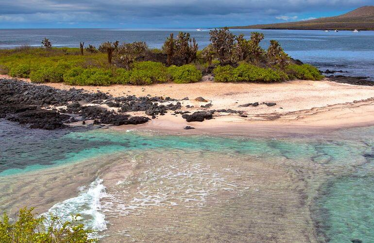 Galapagos at a Glance: Southern Islands (Grand Daphne) tour