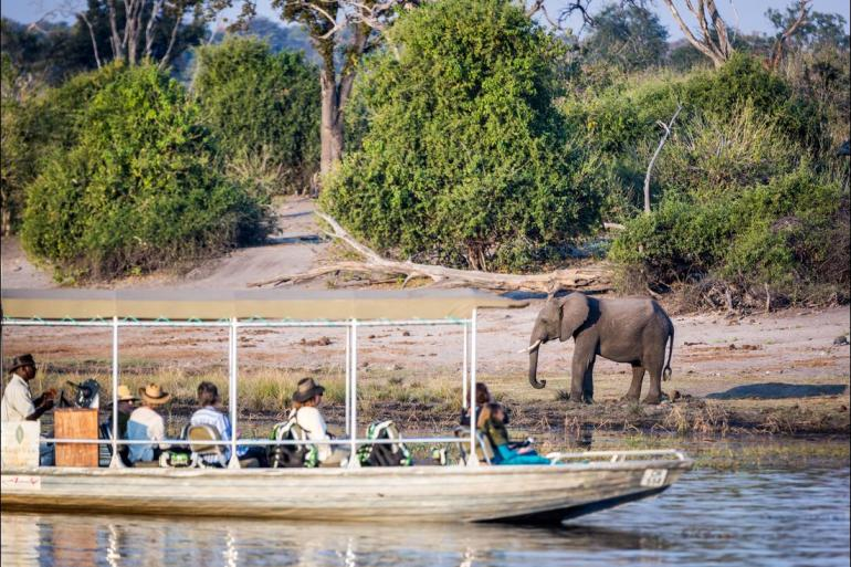 Nature & Wildlife Land expedition Johannesburg to Gorillas package