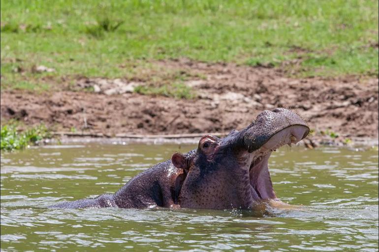 Kampala Lake Malawi Johannesburg to Gorillas Trip