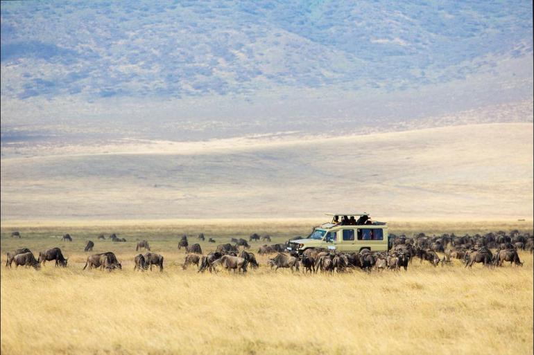 Nairobi Queen Elizabeth National Park Africa Encompassed Southbound Trip