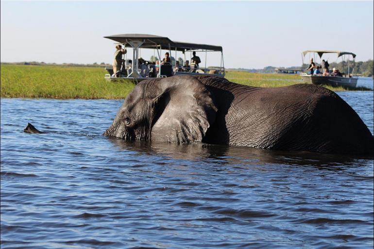 Chobe National Park Kasane Chobe National Park Short Break Trip