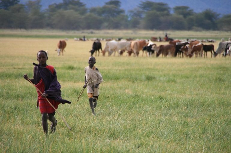 Ngorongoro Crater Serengeti National Park Tanzania Wildlife Safari Trip