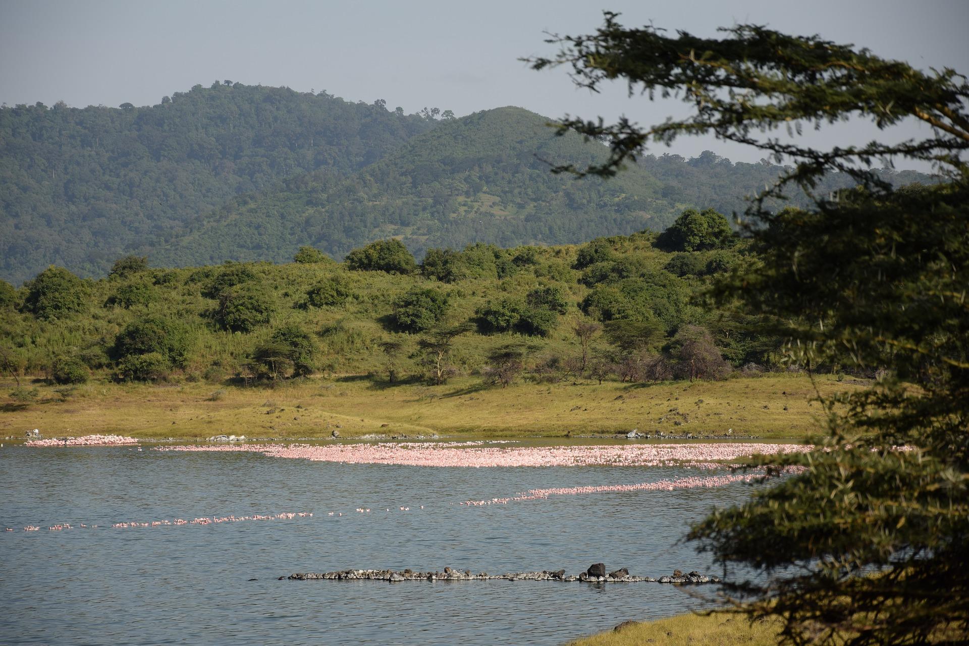 Mountain view of Arusha-Tanzania_1684893_P