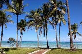 8 Days Indian Ocean Dive Special, Fundu Lagoon, Zanzibar Archipelago  tour