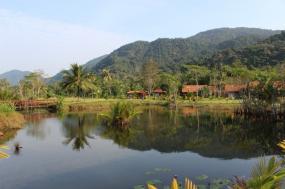 Amazon Cruise:Heart Of Amazonia tour