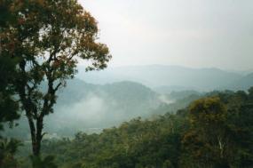 Madagascar 1000 Views tour
