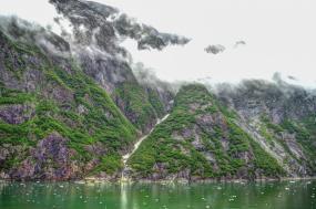 Inner Reaches Eastern Coves tour
