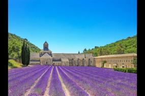 Vélo En Provence