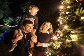 Christmas in Ireland 4-Night Tour