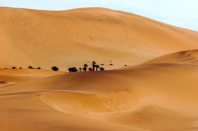 Namibia Desert & Dune tour