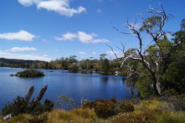 Cradle mountain national park-Australia-2113900-P