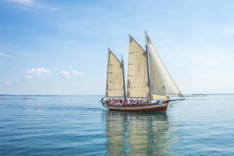 New Zealand Sailing tour