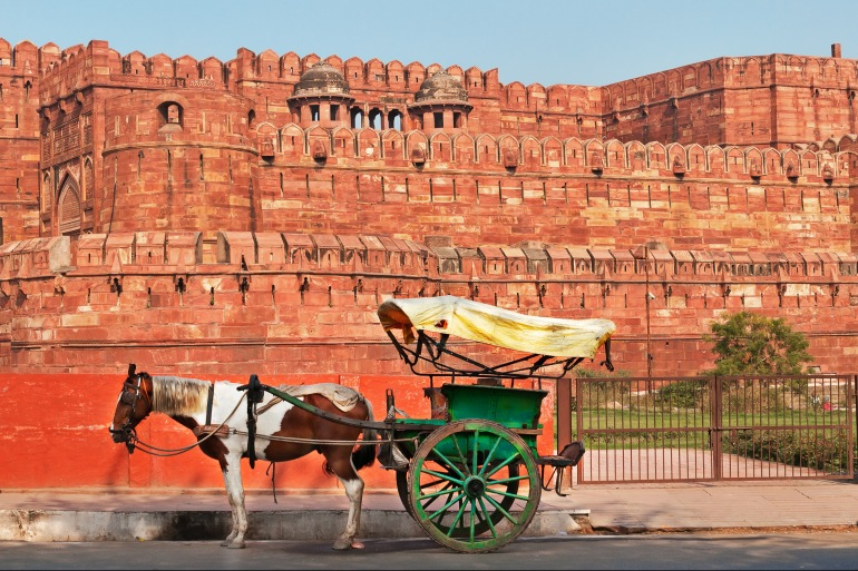Photography Cycling Golden Triangle India tour package