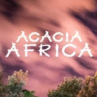 Acacia Africa