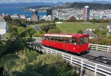 Wellington Attractions