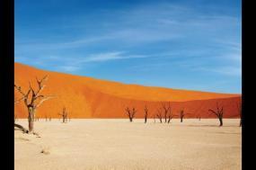 Namibia Lodge Safari tour