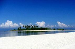 8-Day Philippines Adventure Tour: Manila, Bohol & Panglao