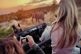 Amboseli Safari Experience tour