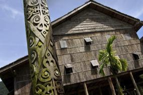 Borneo – Sabah Adventure tour