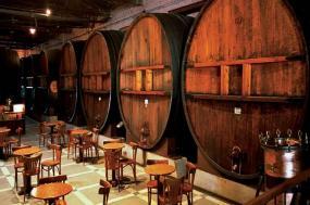 Mendoza Wineries Independent Adventure tour