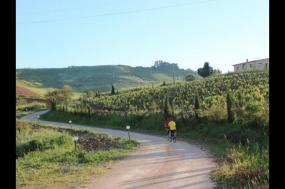 Cycle Western Sicily                                                             tour