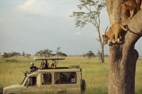 Kenya & Tanzania Safari Experience tour