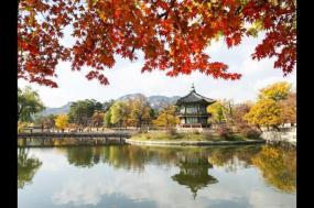 South Korea Explorer tour