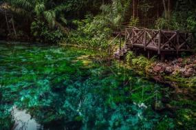 Explore Northern Brazil & Amazon tour