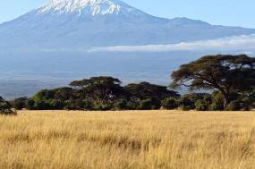Sightseeing From Amboseli To Mara Masai