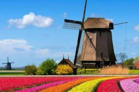 Best of Holland Summer 2018