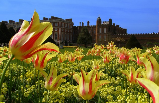 Great Gardens of England and Hampton Court Flower Show tour