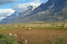 Argentine & Chilean Patagonia 18 Days tour