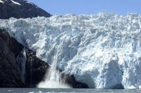 Best of Kenai Fjords National Park tour