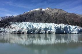 Glacier Bay Kayaking & Wildlife Adventure tour
