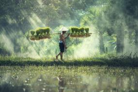 Cambodia Photography Holiday tour