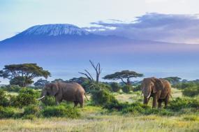 Essence of Tanzania tour