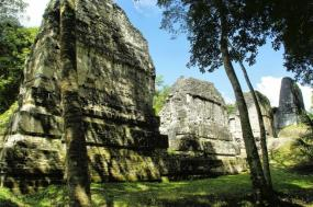 Belize: Rainforests, Reefs & Ruins tour