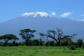 Kilimanjaro Climb-7 days Machame Route tour