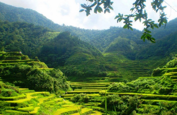 The Philippines: Trekking the Terraces and Beyond  tour