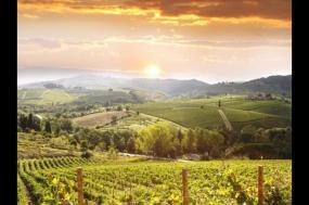 A Taste of Tuscany tour